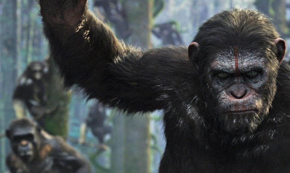 Planeta dos Macacos: O Confronto - Pré-Lançamento (Dual Audio)
